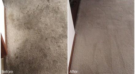 San Francisco Carpet Cleaning